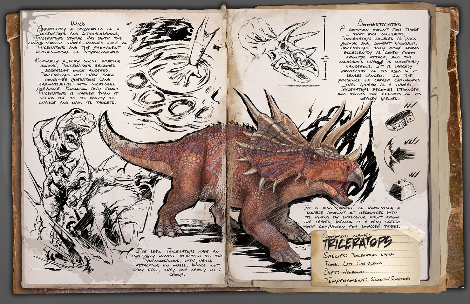 Ausgezeichnet Triceratops Gesicht Färbung Seite Bilder - Malvorlagen ...