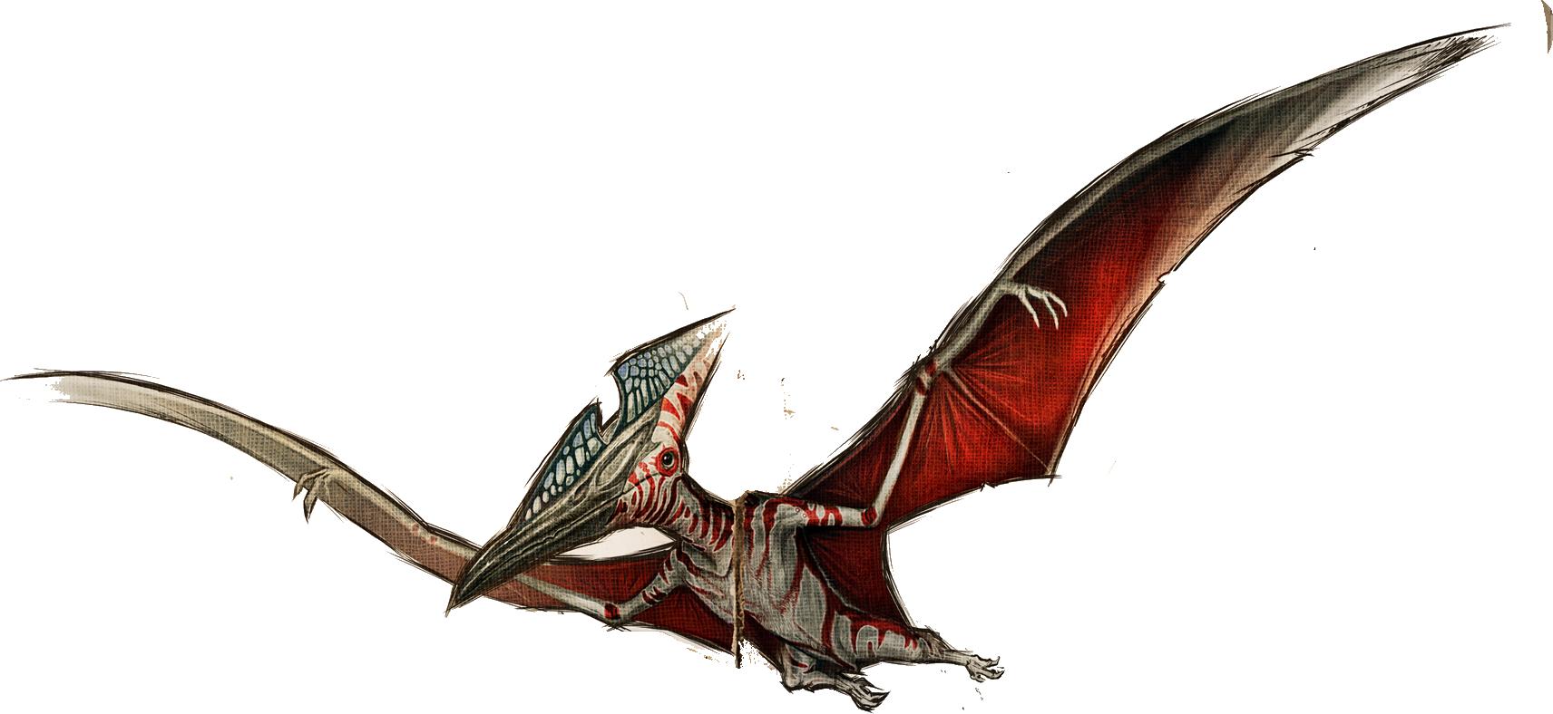 Pteranodon ark forum deutsches ark survival evolved forum wildnis malvernweather Choice Image