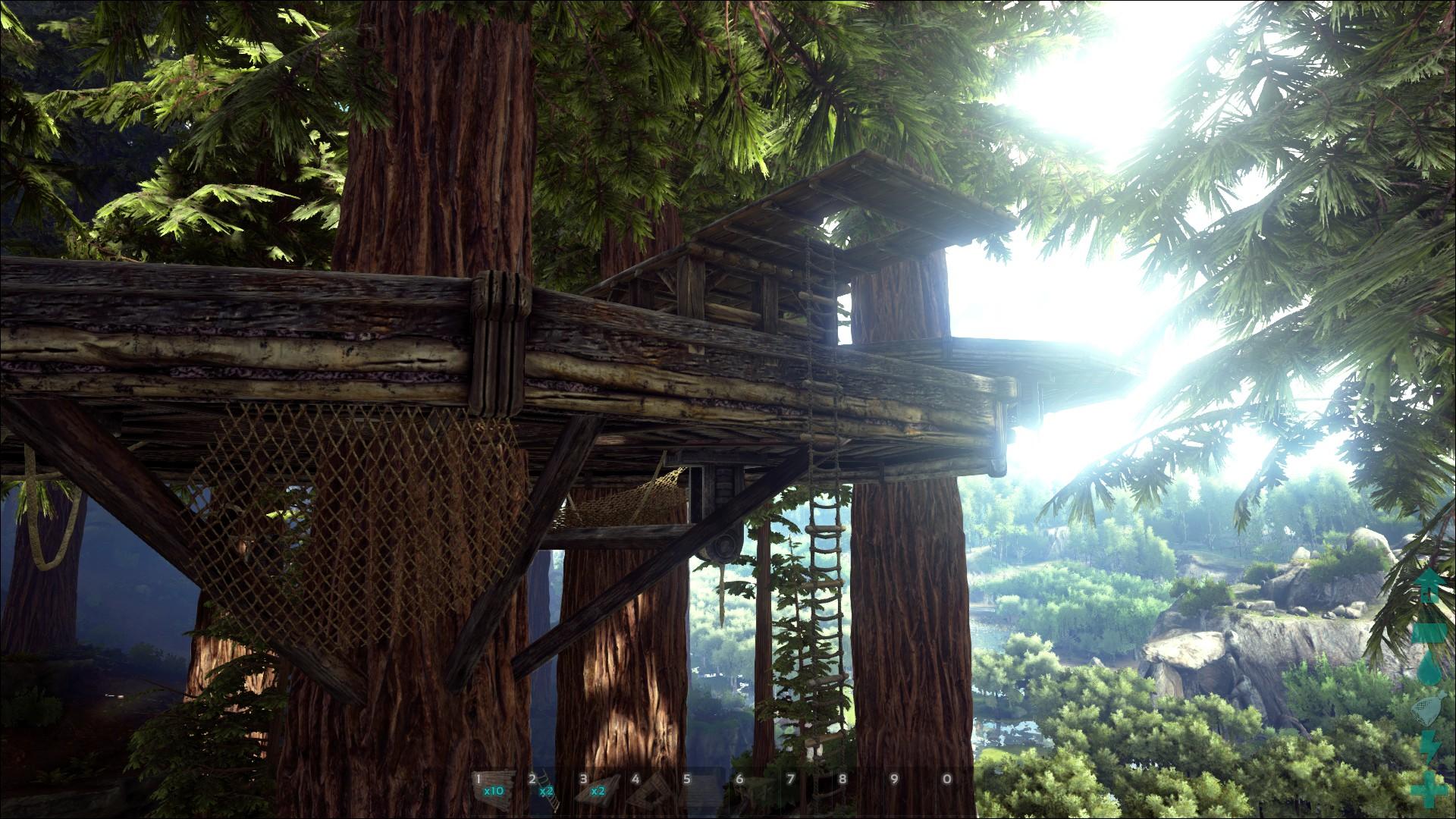 2430 Erste Eindrücke Baumhaus Strukturen Holz Und